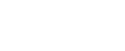 Logo_Team_VLF
